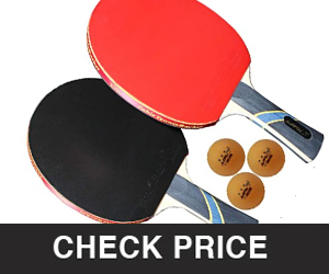 MAPOL 4 Star Professional Ping Pong Paddle Advanced Training Table Tennis Racket with carrying Case (2PCS)