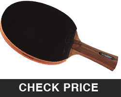 Ping Pong Paddle with Killer Spin