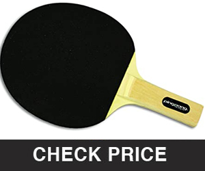 STIGA Recreational-Quality Sandy Table Tennis Racket Perfect for Beginners and Fun with Family and Friends